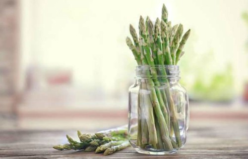 Giống như các cành hoa, măng tây có thể vẫn tươi nếu được cắm vào một bình nước.