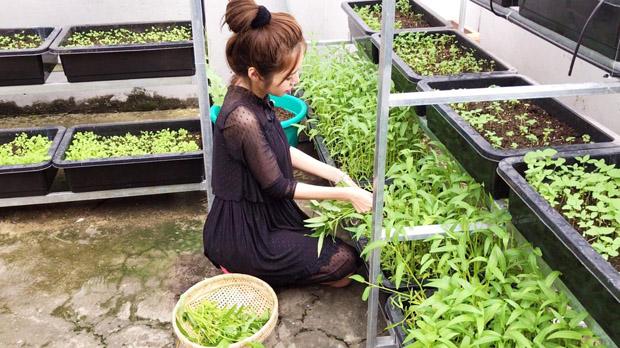Cô từng chia sẻ: Hồi mình muốn làm vườn rau, ai cũng nói đã đầu tắt mặt tối lắm rồi đừng ôm đồm thêm việc nữa. Nhưng thật ra mình nghĩ việc có thời gian cho người nào, hoặc việc gì hay không chỉ nằm ở chỗ mình có muốn để tâm vào họ hay không. Nếu có để tâm thì hạn hẹp thế nào cũng thành có thời gian. Và nếu đã không để tâm thì dù rảnh rỗi thế nào cũng trở thành quá bận rộn.
