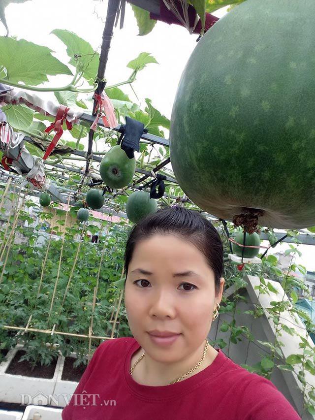 Chia sẻ với PV, chị Huyền nhấn mạnh ngay khi cây bắt đầu có hoa thì phải ngưng tưới NPK. Lúc này chỉ nên tưới hàng tuần bằng nước gạo ủ chua hoặc phân cá.