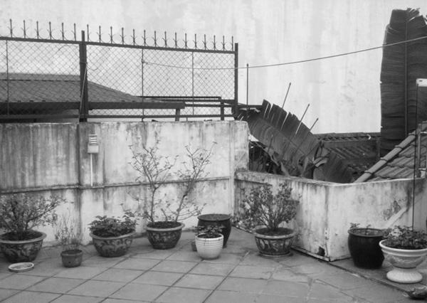 Sân thượng cũ chỉ để trồng cây cảnh nên khá lãng phí.