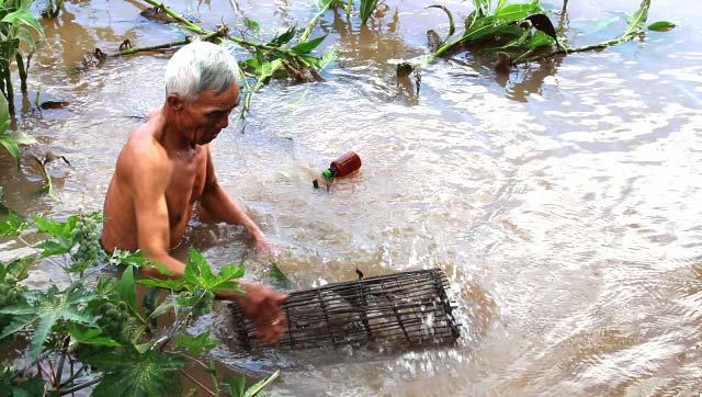 Người dân ở khu vực đầu nguồn (huyện Hồng Ngự) tận dụng thời gian nhàn rỗi để kiếm thêm thu nhập bằng cách đặt lọp cua đồng.