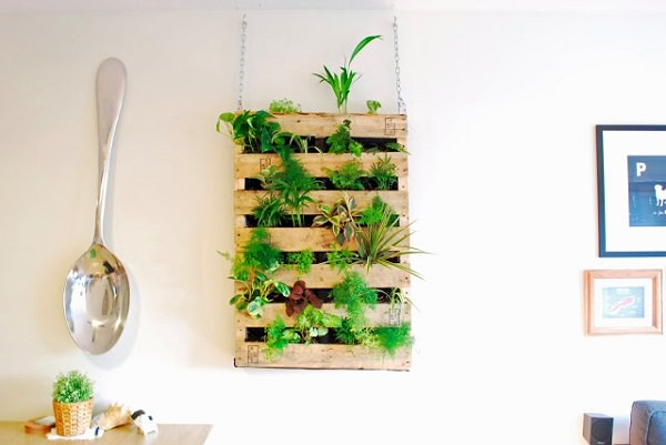 Pallet dễ khiến người ta liên tưởng đến những tấm ván lớn với những thanh gỗ nằm ngang thường dùng làm giá đỡ hàng tại kho bãi. Những thanh gỗ nằm ngang cũng là một ý tưởng thiết kế vườn treo mới mẻ mà bạn có thể thực hiện tại nhà.