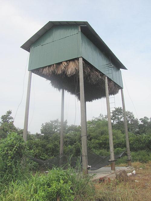 Chuồng nuôi dơi của ông Nguyễn Văn Hậu ở xã Tân Phúc, huyện Hàm Tân, tỉnh Bình Thuận.