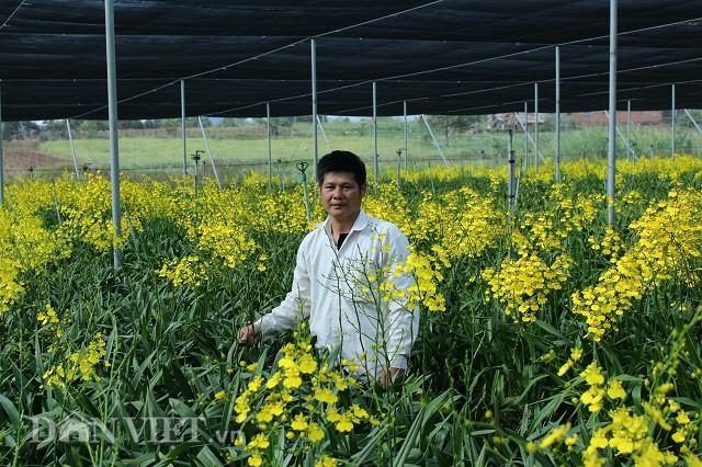 """Giảng viên về vườn """"nghịch đất"""" trồng lan Vũ nữ, lãi 50 triệu/tháng"""