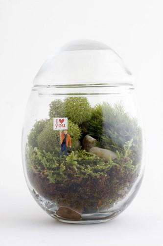Bình thủy tinh hình quả trứng nhỏ nhắn với cây và hoa bé xíu bên trong là tiểu cảnh phù hợp với những căn hộ nhỏ. Ảnh: Printest.