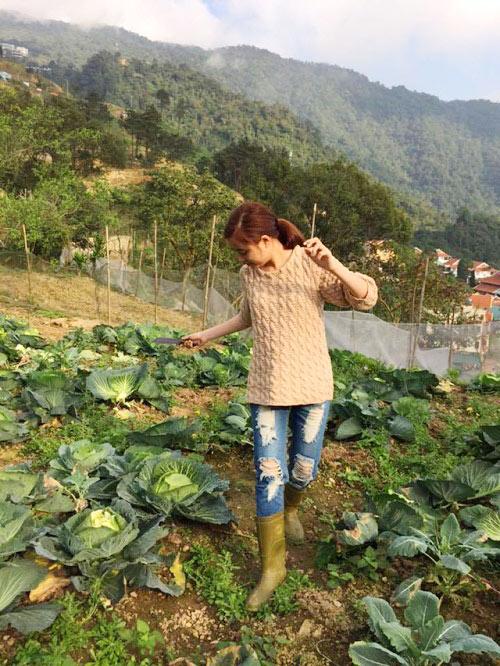 Nữ ca sĩ giản dị ra hái rau tại khu vườn do bố mẹ vun trồng.