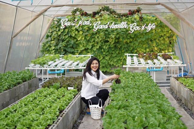 Dòng chữ này cũng đã nói lên quan điểm của bà trong việc đề cao việc trồng được các thực phẩm sạch, không gây nguy hại đến sức khỏe con người.