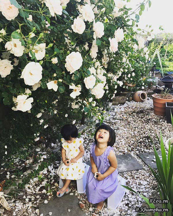 Hai con gái chị Quỳnh thích thú chơi đùa dưới bóng mát của giàn hồng.
