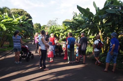 Sau một thời gian, ngày càng nhiều gia đình thích thú tham gia vào việc làm vườn. Những người quá bận rộn sống trong vùng vẫn được thưởng thức thực phẩm miễn phí. Họ có thể đóng góp vật dụng, nước tưới, chế biến mứt, món ăn để biếu lại mọi người.