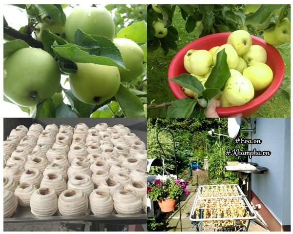 Nhà anh Hùng ăn táo không hết nên đem phơi khô.