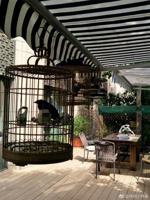 Ở một nơi mà giá nhà đất đắt đỏ gần nhất thế giới như Bắc Kinh thì ngôi nhà vườn của Dương Mịch mua cho bố mẹ được định giá hàng triệu đô
