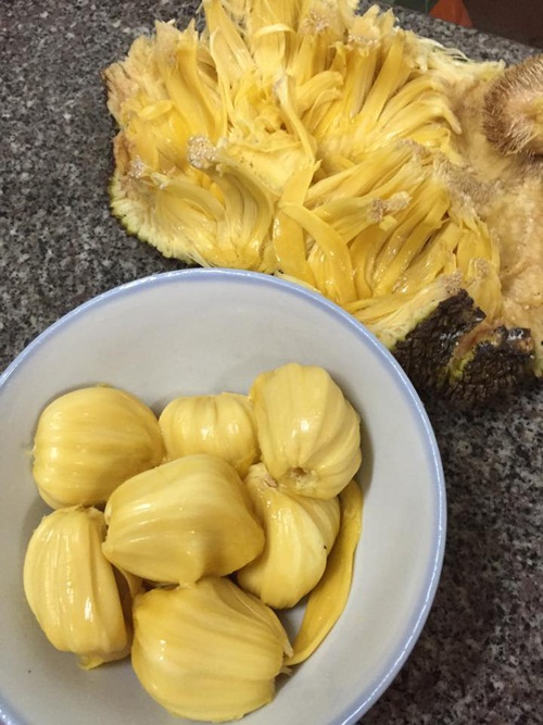 Trái mít mật chín thơm thu hoạch được trong vườn.