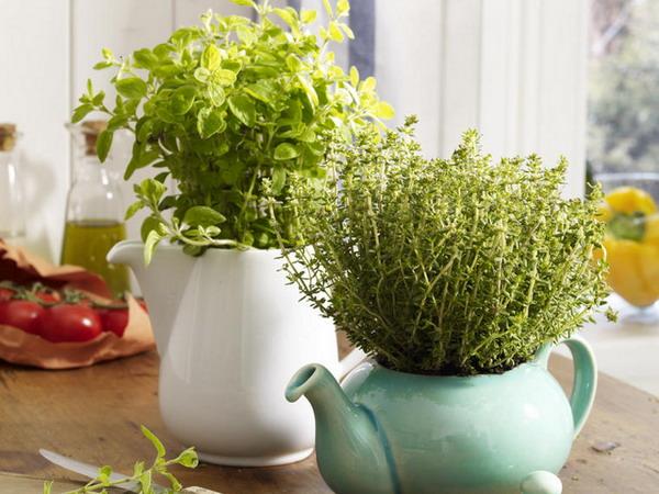 Những ấm trà với gam màu tao nhã kết hợp với sắc xanh của cây cỏ, giúp làm xanh thêm không gian sống.