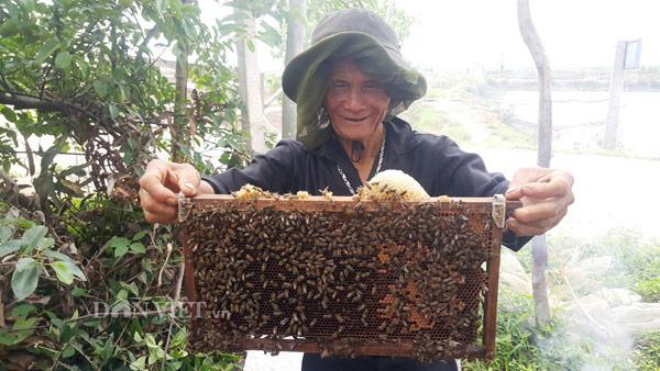 Các thợ ong kiểm tra các thùng ong trước khi đưa các cầu ong đi quay lấy mật.