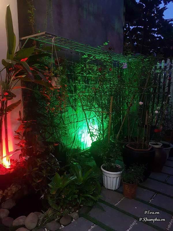 Góc vườn nhỏ vào ban đêm vô cùng lung linh.