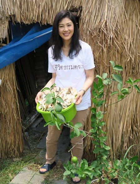 Bà Yingluck là tín đồ của rau diếp và các loại rau sống khác vì tin nó rất tốt cho sức khỏe. Bà nói: Trồng nhiều loại rau trong vườn nhà, tập trung vào những loại rau lành mạnh có tác dụng chữa bệnh như chống ung thư, tim mạch, chuột rút....