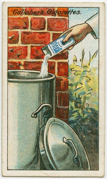 Để ngăn ruồi, bạn hãy rắc mỗi ngày một lượng nhỏ hàn the vào thùng rác. Hàn the có tác dụng ngăn ruồi hiệu quả.