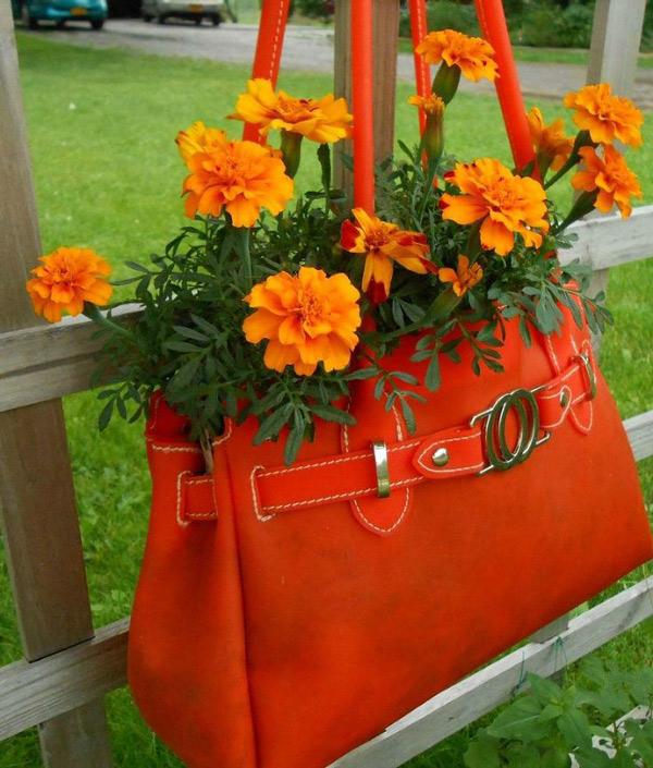 Những chiếc túi xách cũng là sự lựa chọn khá hoàn hảo để trồng cây khi lượng đất để bên trong túi được khá nhiều. Bạn đừng quên đục một vài lỗ để thoát nước tốt nhé.