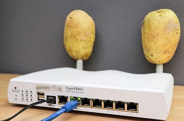 Khoai tây có thể giúp cục wifi thu phát sóng tốt hơn.