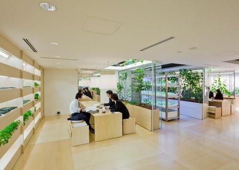 Cây tạo thành vách ngăn tự nhiên giữa các không gian họp.