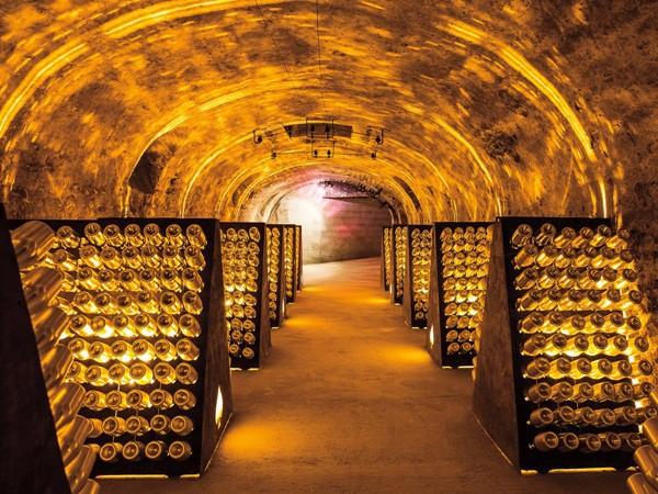 Hầm rượu vang hảo hạng Armand de Brignac