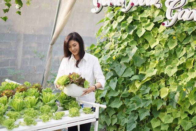 Để có được những luốn rau tươi xanh trong điều kiện thời tiết nắng nóng liên tục ở Thái Lan, bà Yingluck đã cho làm nhà lưới bao phủ.