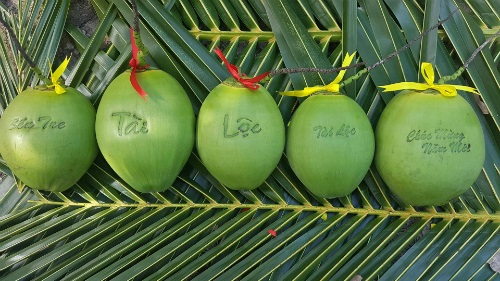 Những trái dừa có in chữ từng có giá 300.000 - 500.000 đồng/quả.