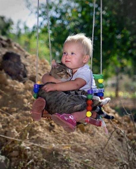 Một tấm ảnh có thể hạ gục bất cứ trái tim nào. Nhìn yêu quá đúng không? Cậu bé dễ thương này đang ôm chú mèo mập như thể đây là thứ quý giá của cậu. Một tình bạn quá đỗi dễ thương.