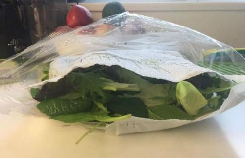 Cách đơn giản để giữ salad tươi trong thời gian dài là: rửa sạch lá rau, dùng máy vắt rau làm khô rau, sau đó đặt rau vào những chiếc khăn giấy, bọc khăn giấy lại, cho vào túi nhựa hoặc hộp nhựa đóng kín (nhớ loại bỏ không khí trước), cuối cùng cất vào tủ lạnh.