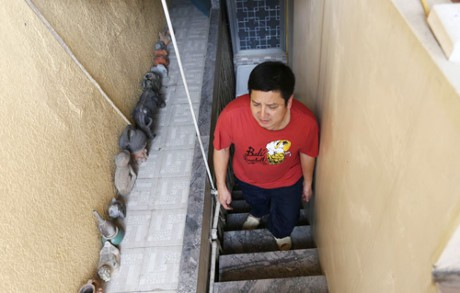 Cầu thang nhỏ đi lên căn tập thể của Chí Trung