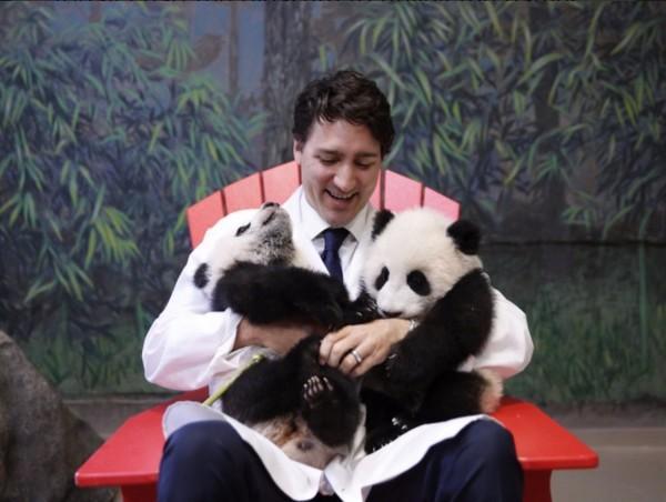 Không chỉ gần gũi, thân thiện, ngài Thủ tướng xứ lá phong còn là người cực kỳ yêu động vật. Khoảnh khắc đáng yêu này khiến cho nhiều người ấn tượng về một nhà lãnh đạo giàu tình yêu thương.
