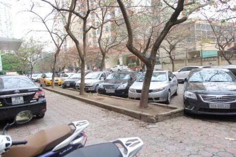 Nhiều người cuống cuồng đi tìm chỗ để xe mới.