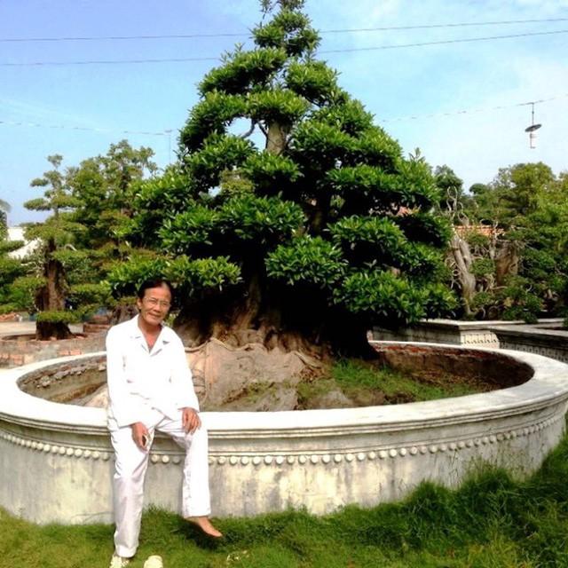 Nghệ nhân quốc gia Võ Phi Sơn bên cây Cà Na trị giá hàng chục tỷ đồng.