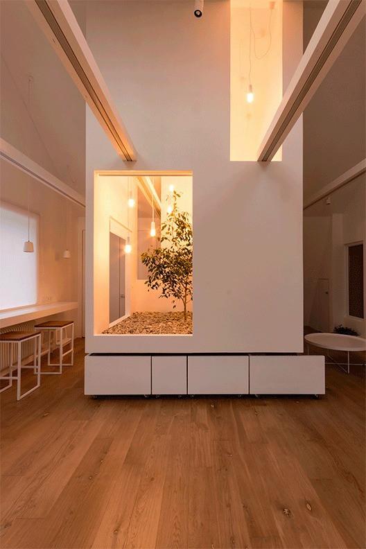 Một khối hộp ở giữa phòng có tác dụng chia toàn bộ phòng thành 5 khu vực khác nhau. Cây xanh trong chiếc hộp luôn tươi tốt nhờ hấp thụ ánh sáng chiếu qua cửa sổ kính trên mái nhà.