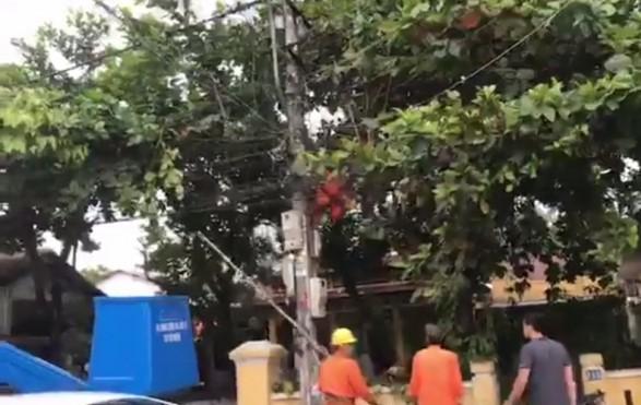Nạn nhân bị điện giật treo người trên trụ. Ảnh: Facebook Huu Loi Ngo