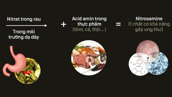 Sơ đồ minh họa quá trình biến đổi thành chất gây ung thư của dưa