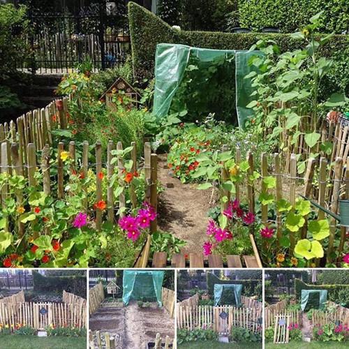 Nếu mỗi người đều có một khu vườn cho riêng mình, tất cả nhân loại sẽ hạnh phúc và giải quyết được hầu hết vấn đề khí hậu, môi trường, người bạn nhỏ tuổi của Fons chia sẻ.