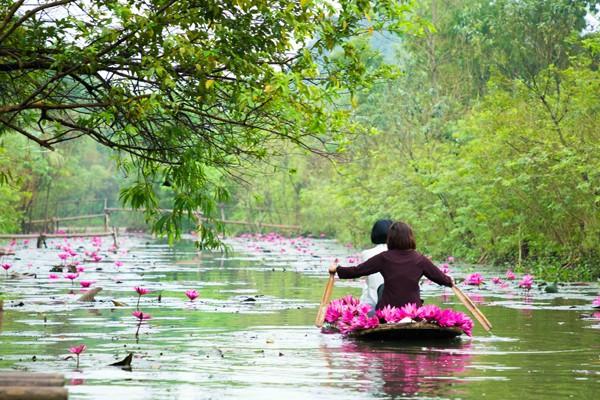 Đi thuyền trên sông Yến giữa bạt ngàn hoa súng cũng là một trải nghiệm tuyệt vời.