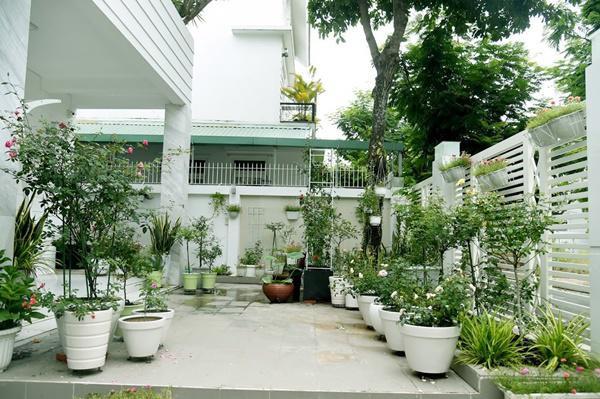 Cây xanh chính là điểm đặc biệt cũng là thứ anh thích nhất trong nhà.