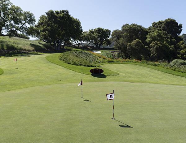 Khu vực sân golf có diện tích khủng