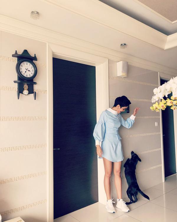 Vì ở 1 mình, HHen Niê nuôi thêm 1 chú cún vừa làm người bầu bạn. Bên trên, 2 chiếc đèn chùm biến không gian trở nên cổ điển, đồng thời cũng là điểm nhấn để nhà bớt đơn điệu.