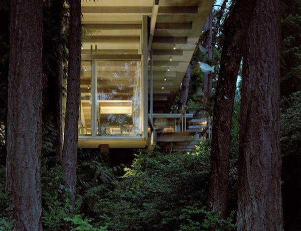 Trần nhà cũng được làm bằng gỗ tự nhiên