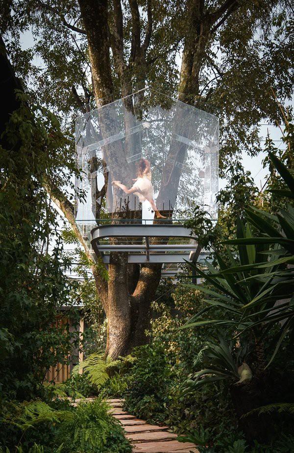 Ngôi nhà kính trên cây là một phần trong dự án kỷ niệm 10 năm Design House - một sự kiện thường niên nổi bật trong tuần lễ thiết kế Mexico.