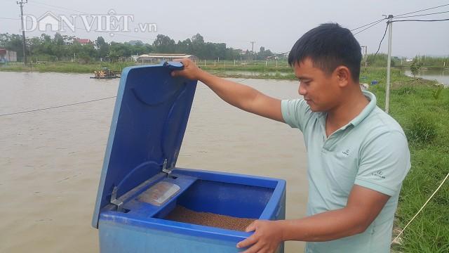 Chuyên viên ngân hàng Hoàng Thanh Liêm (34 tuổi) bỏ phố về quê nuôi cá.