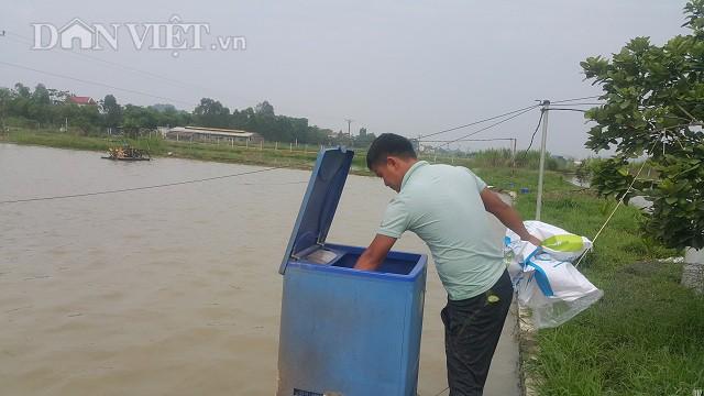 Anh Hoàng Văn Liêm đang đi kiểm tra lượng cám còn trong máy và hẹn giờ để cho cá ăn tự động.