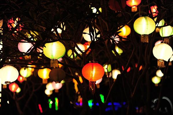 Hàng trăm chiếc đèn lồng tạo nên một vườn quả lung linh nhiều sắc màu.
