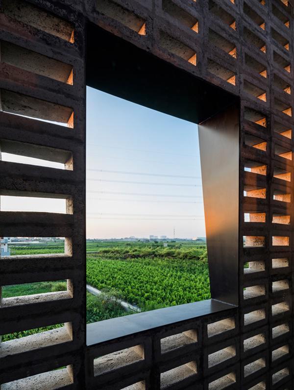 Một khung cửa sổ nhìn ra cánh đồng xanh mướt