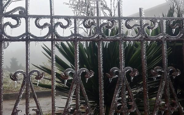 Hàng rào trên đỉnh Mẫu Sơn cũng bị phủ bởi lớp băng giá lạnh. Ảnh: T.Dương