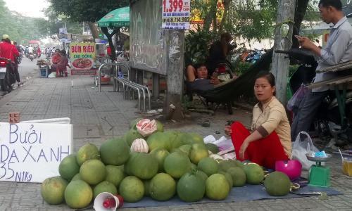 Bưởi da xanh được các chủ vườn mang lên vỉa hè Sài Gòn bán với giá rẻ do thương lái ngưng mua. Ảnh: Hồng Châu.
