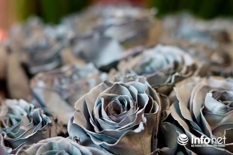 Hoa hồng nhuộm bạc lần đầu có mặt trên thị trường hoa nhập khẩu tại TP.HCM.